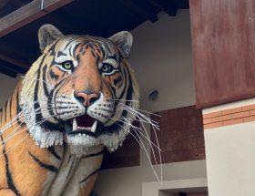 la tigre di luca bertozzi ingresso fondazione carnevale di viareggio