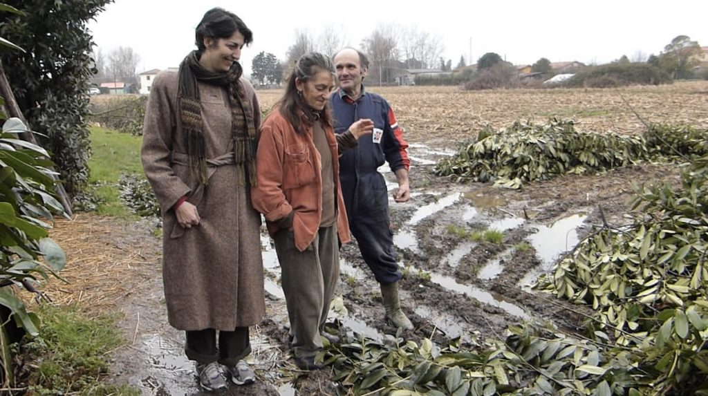 tatiana villani 3 artista e contadini