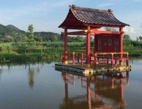 1 podere lovolio massarosa fondazione pomara scibetta la pagoda galleggiante