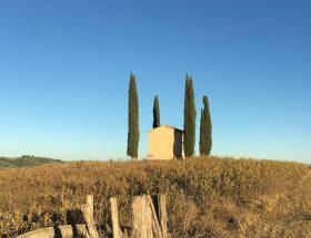 1 chiesetta di san pierino camugliano pisa IMG_4145