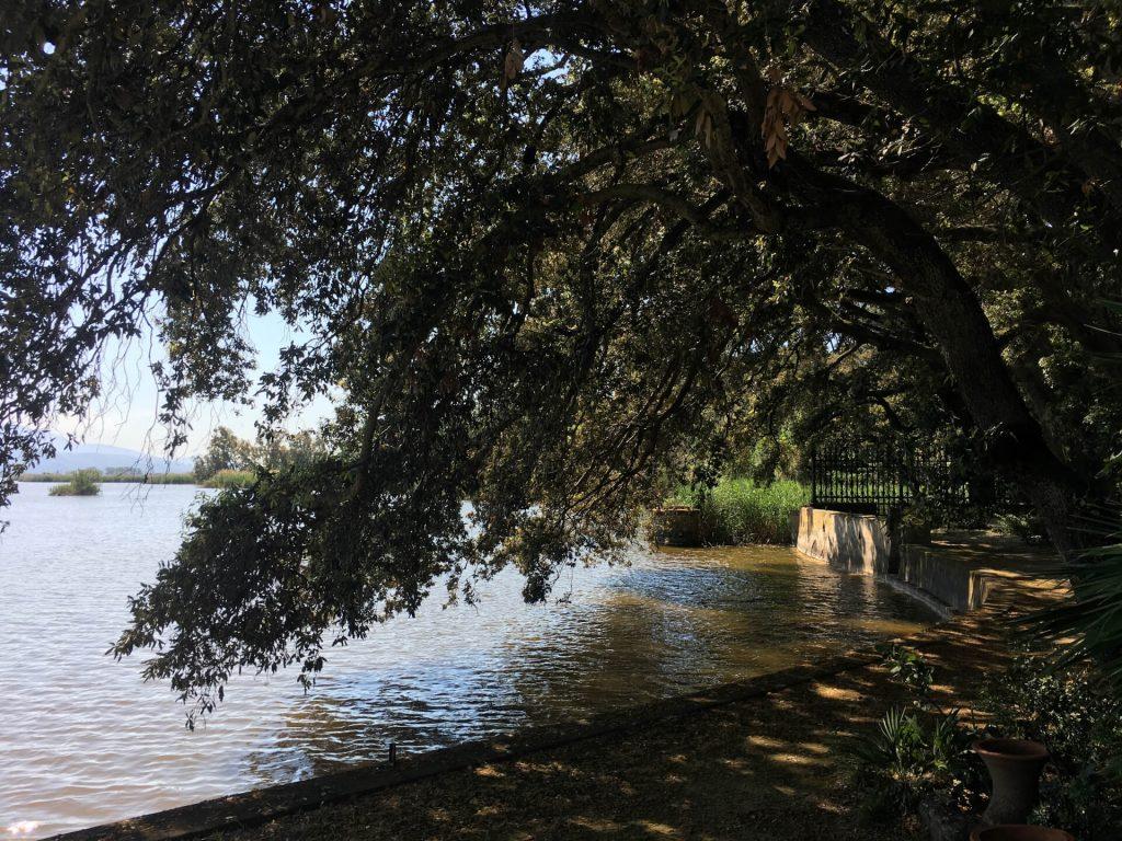 18 villa orlando torre del lago puccini lucca IMG_7678 ok