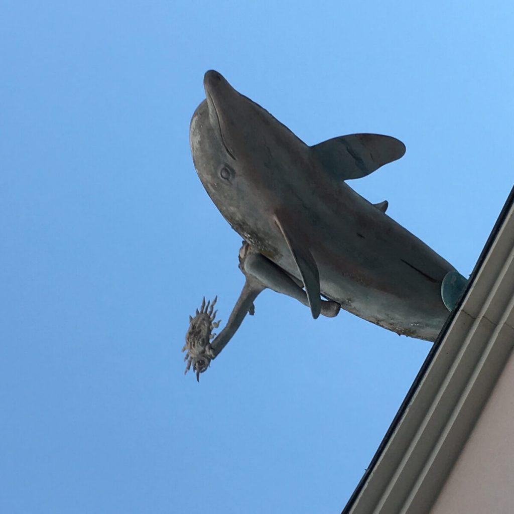 cittadella del carnevale di viareggio 2 gli arredi delfino
